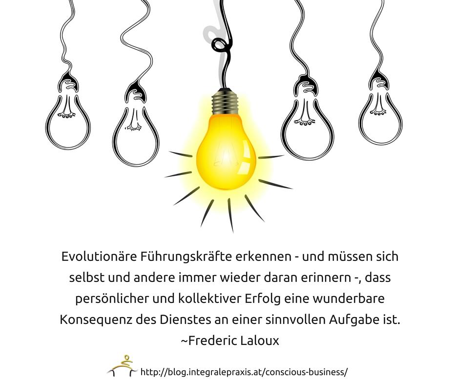 Evolutionäre Führungskräfte erkennen - und